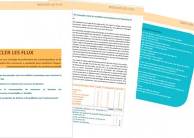 Référentiel OREE ADEME – Evaluer son niveau d'intégration en Ecologie Industrielle